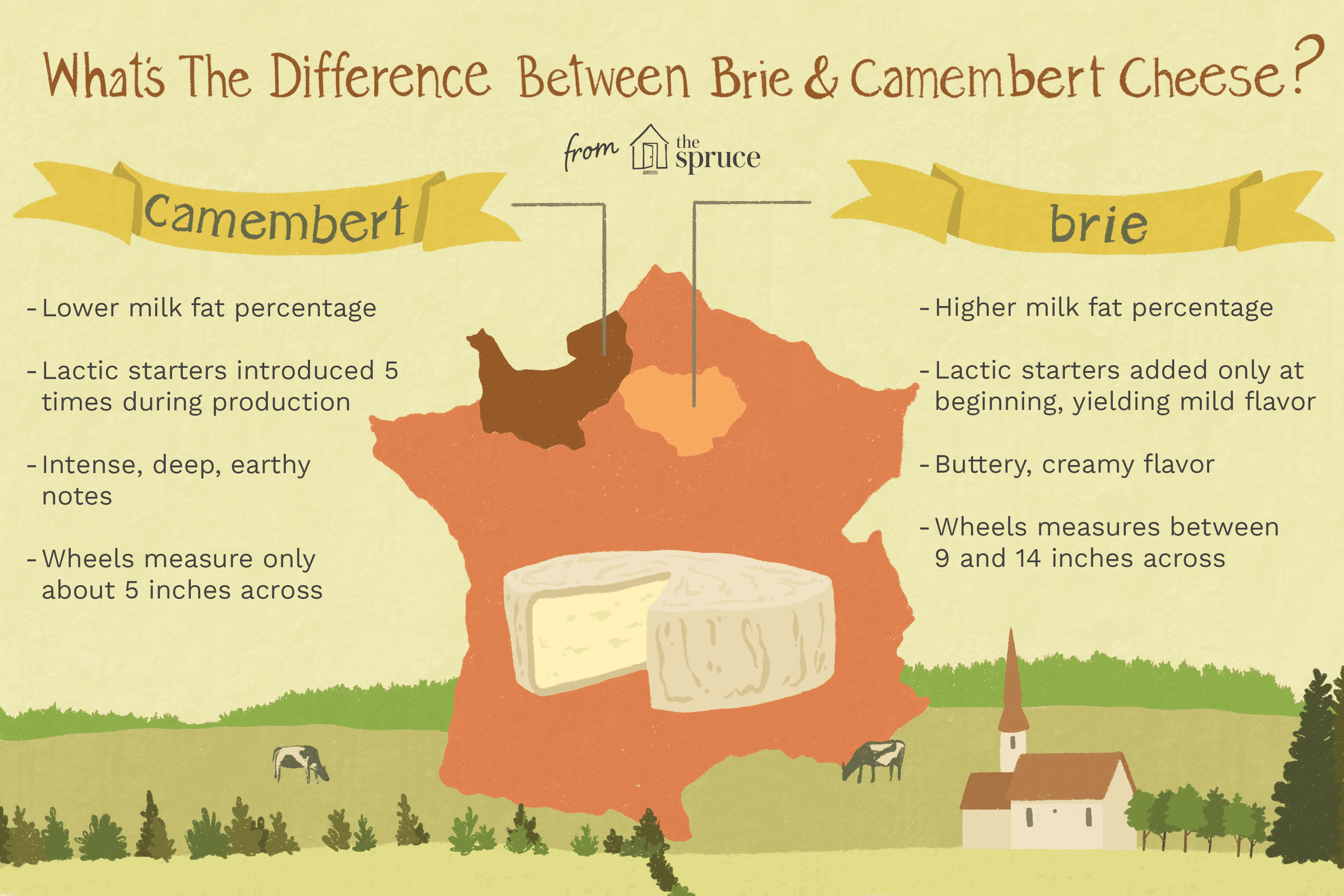 Difference between brie and camembert cheeses