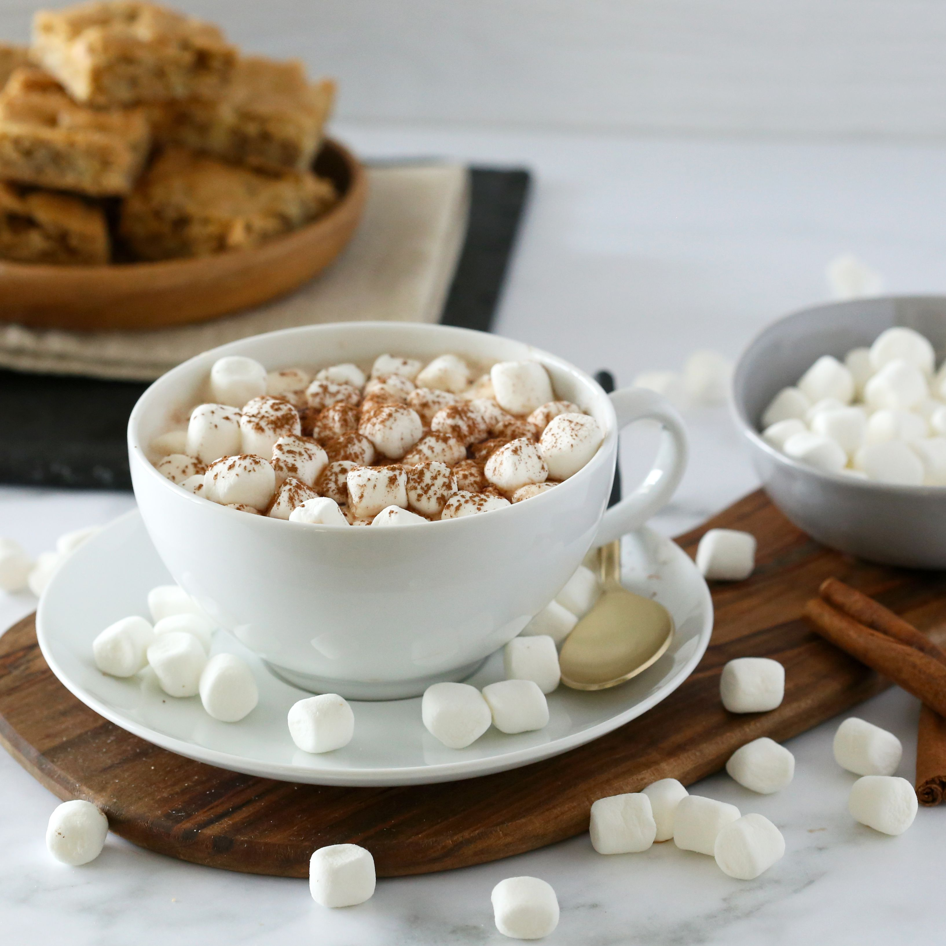 Hot Cocoa Recipe With Marshmallows Recipe
