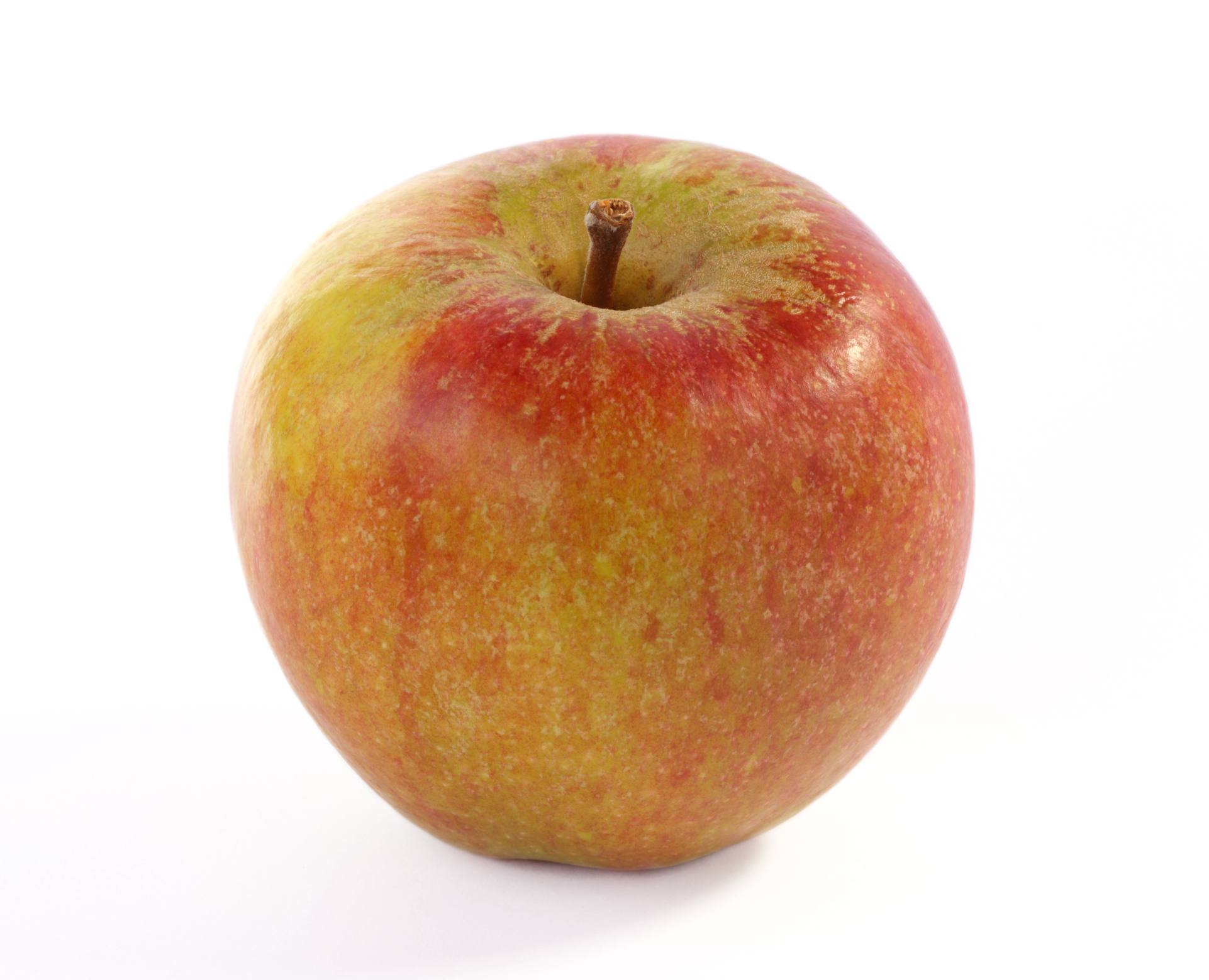 Cox's Pippin Apples