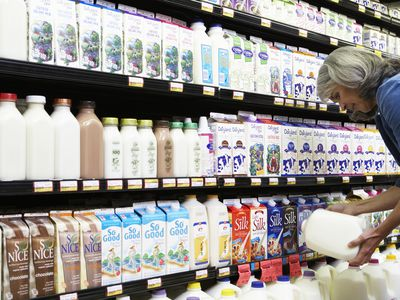 How Long Does Powdered Milk Really Last?