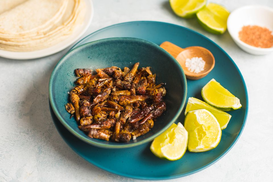 Chapulines Mexican grasshoppers recipe