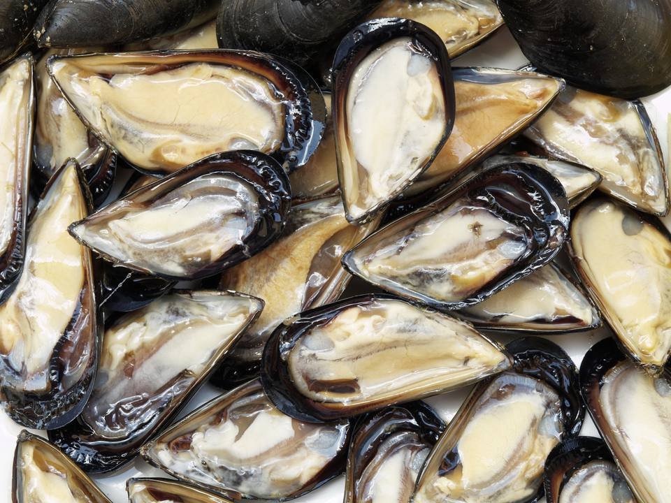 Guide to Cooking Mussels - How to Cook Mussels