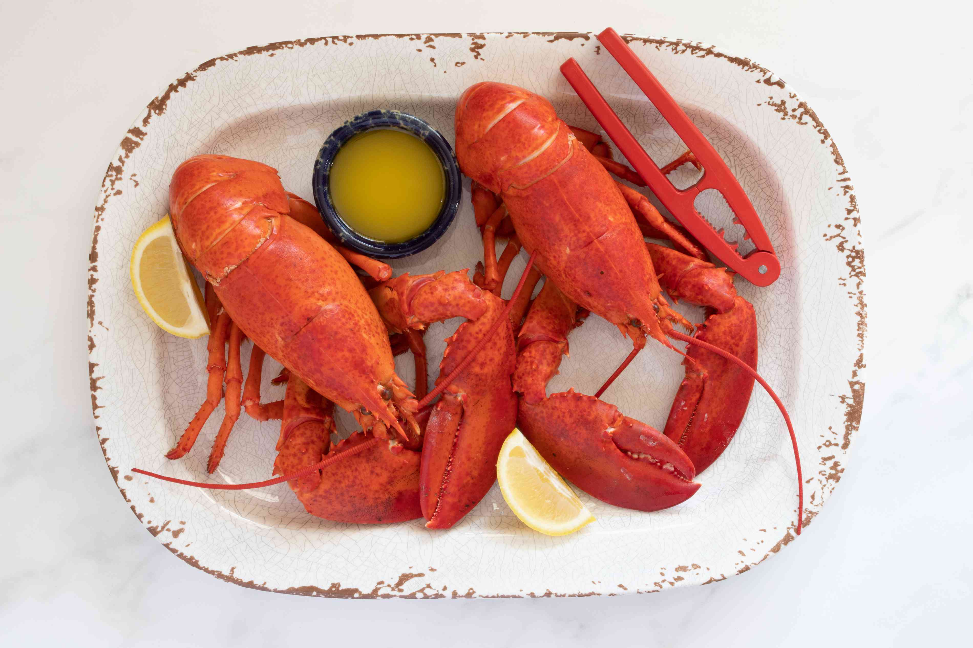 two steamed lobsters with butter & lemon