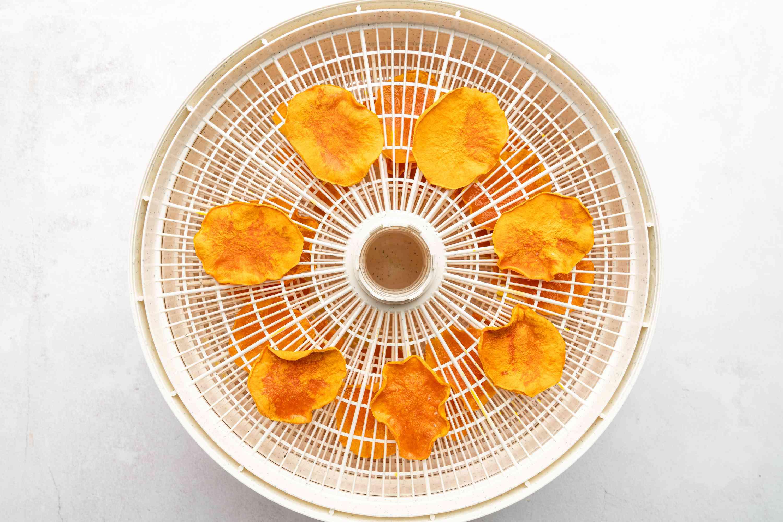 butternut squash chips in a dehydrator
