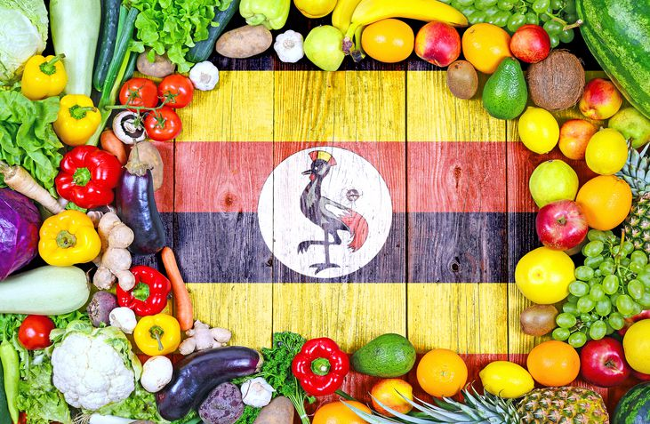 Fruits and veggies of Uganda