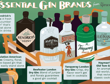 illustration of essential gin brands to know