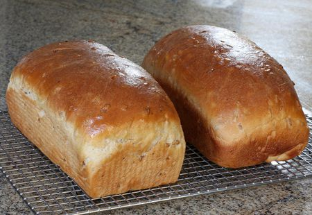 Image result for loaves of bread