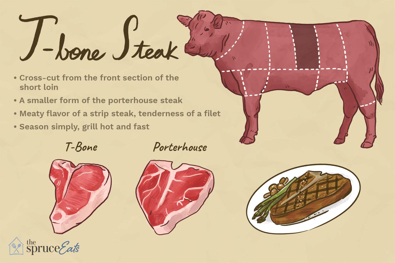 T bone steak illustration