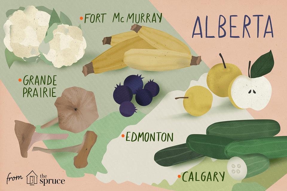 seasonal fruits and vegetables of alberta