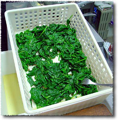 Making a Spinach Sformato: the Spinach