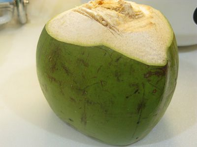 Opening young coconut for drinking