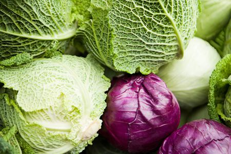 Four Varieties Of Cabbage And Their Uses