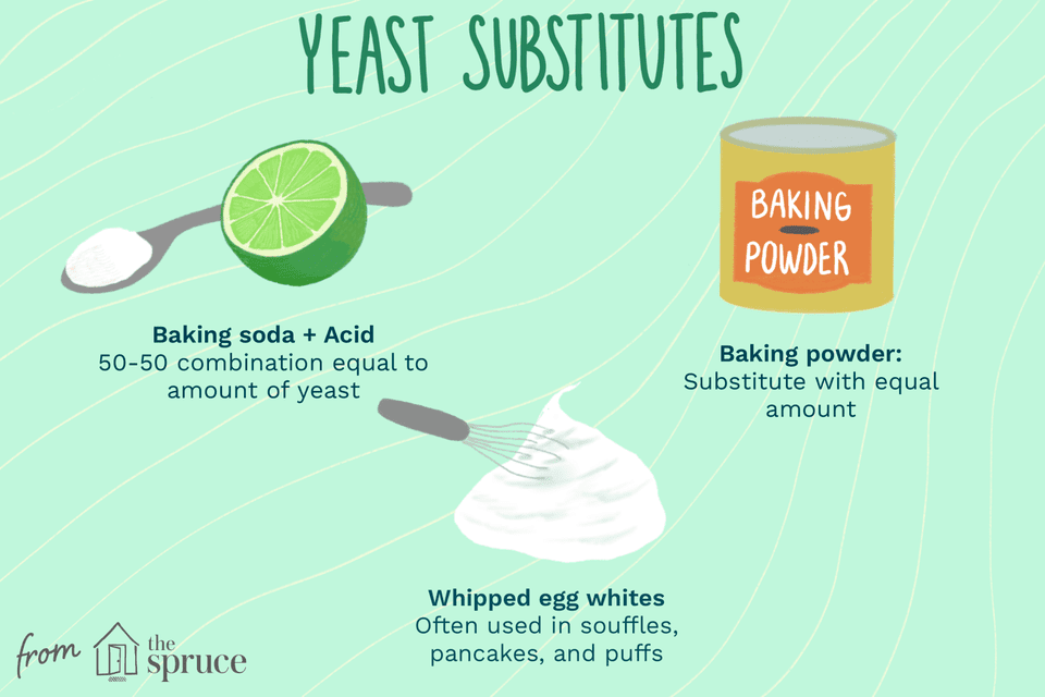 illustration showing common yeast substitutes