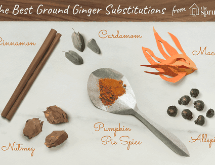 illustration showcasing the best ground ginger substitutions