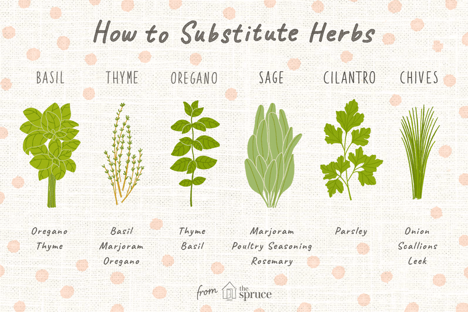 how to substitute herbs illustration