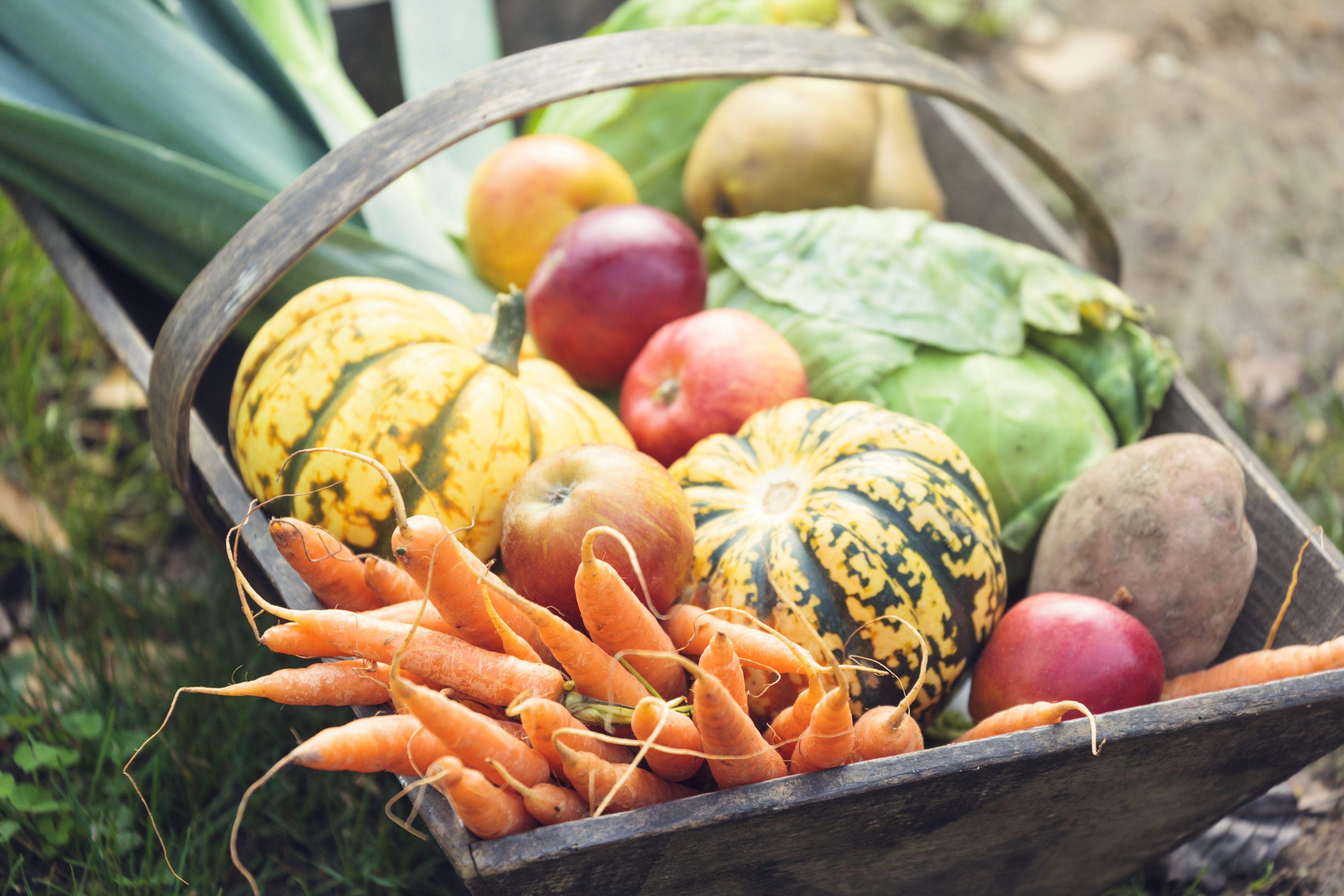 Wooden basket full of fresh vegetables