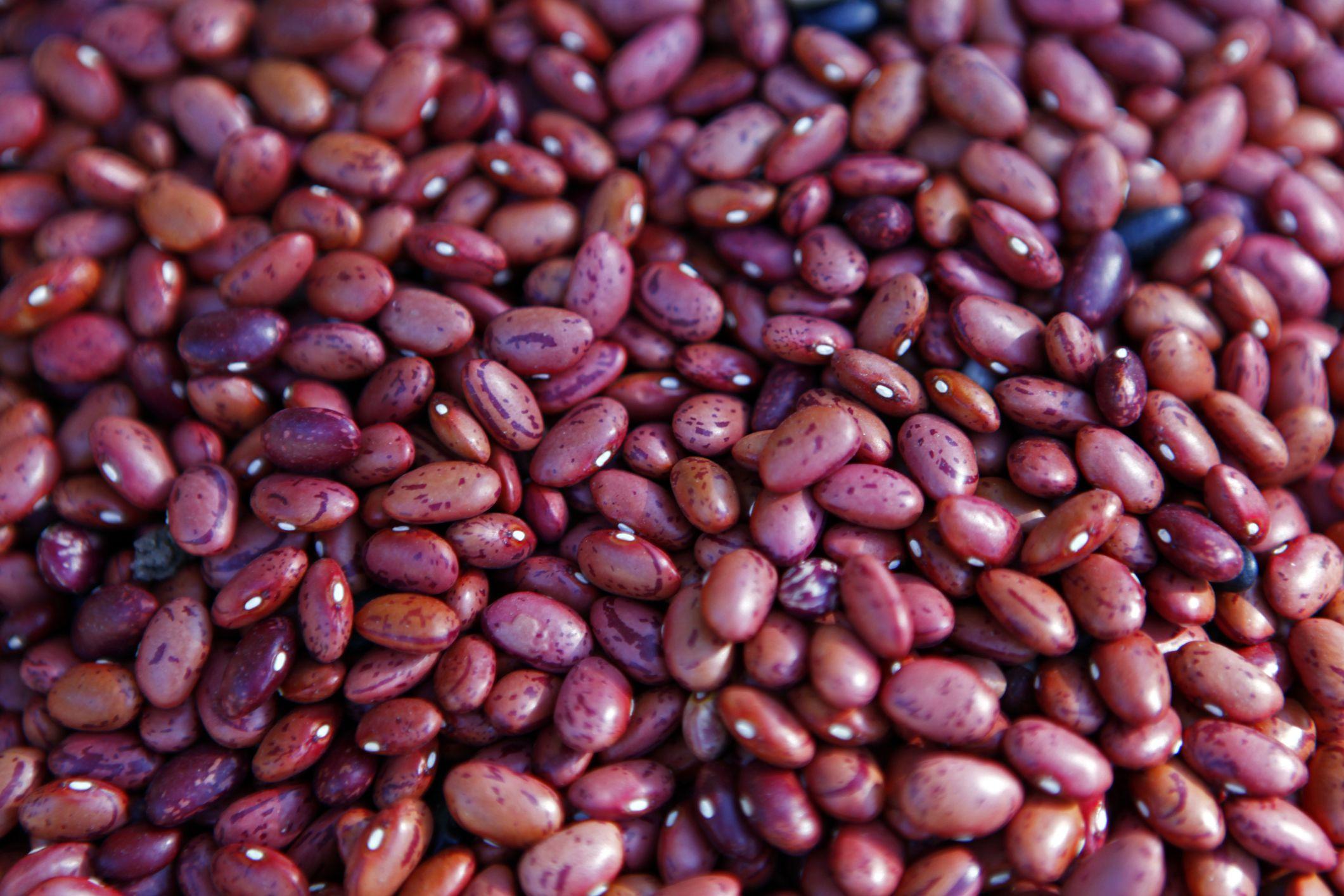 Santa Maria Barbecue Beans Recipe