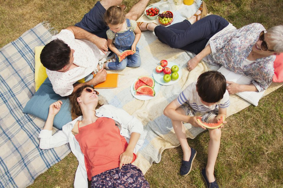 Overhead view multi-generation family enjoying summer picnic