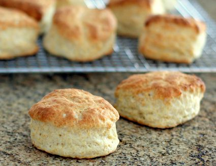Duck Fat Biscuits