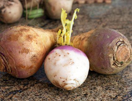 Locally Grown Fresh Rutabagas, Unwaxed