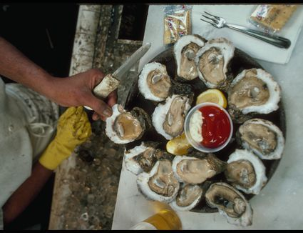 A cook shucking oysters