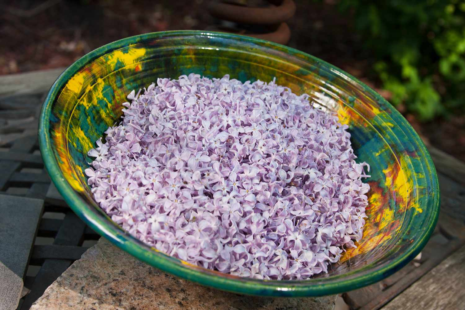 Lilac florets used to make a DIY lilac simple syrup