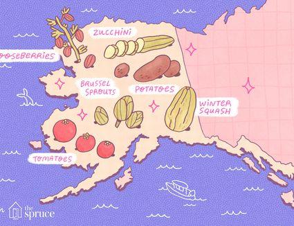 seasonal fruits and vegetables of alaska