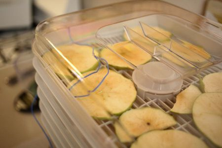 A Guide to Dehydrating Apples in a Food Dehydrator