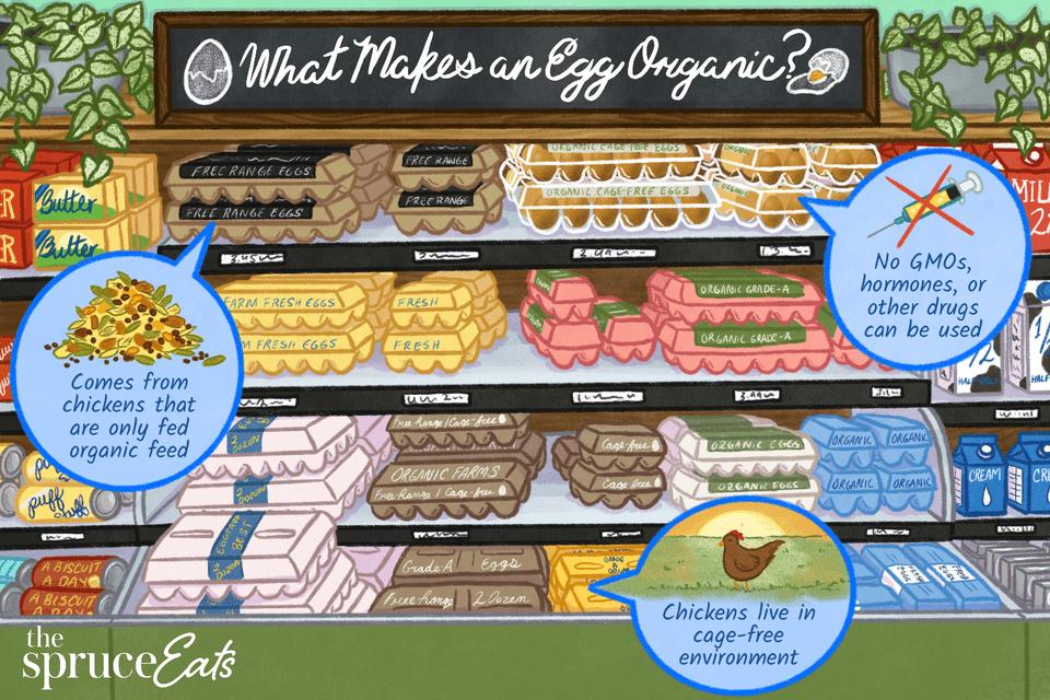 What Makes an Egg Organic