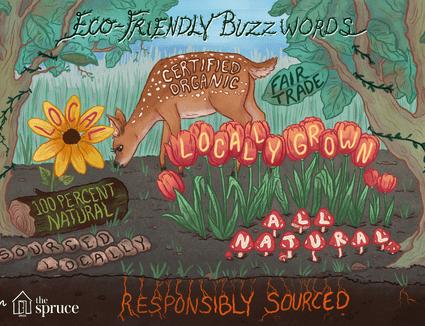 eco friendly buzzwords