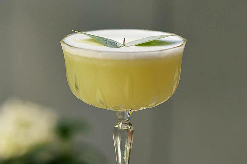 Receta de eucalipto y martini