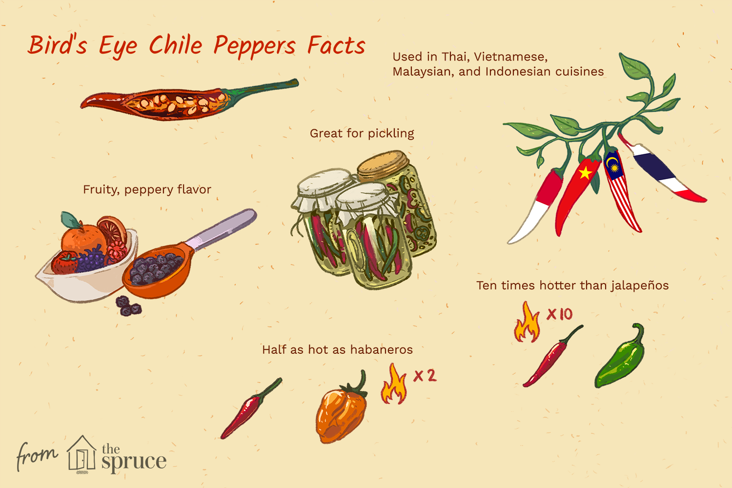 what are bird's eye chiles