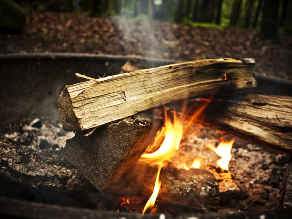 campfire logs burning