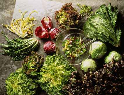 Chicories such as endive, radicchio, curly endive, and escarole