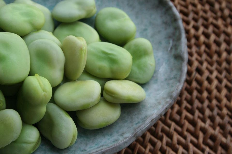 Fresh fava beans on a dish