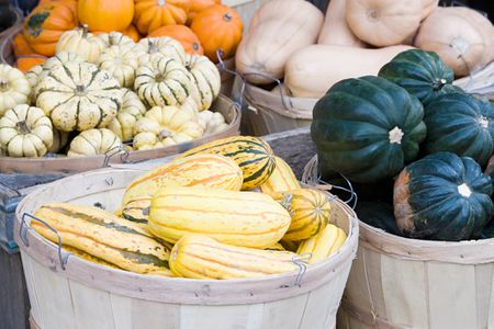 15 winter squash and pumpkins varieties