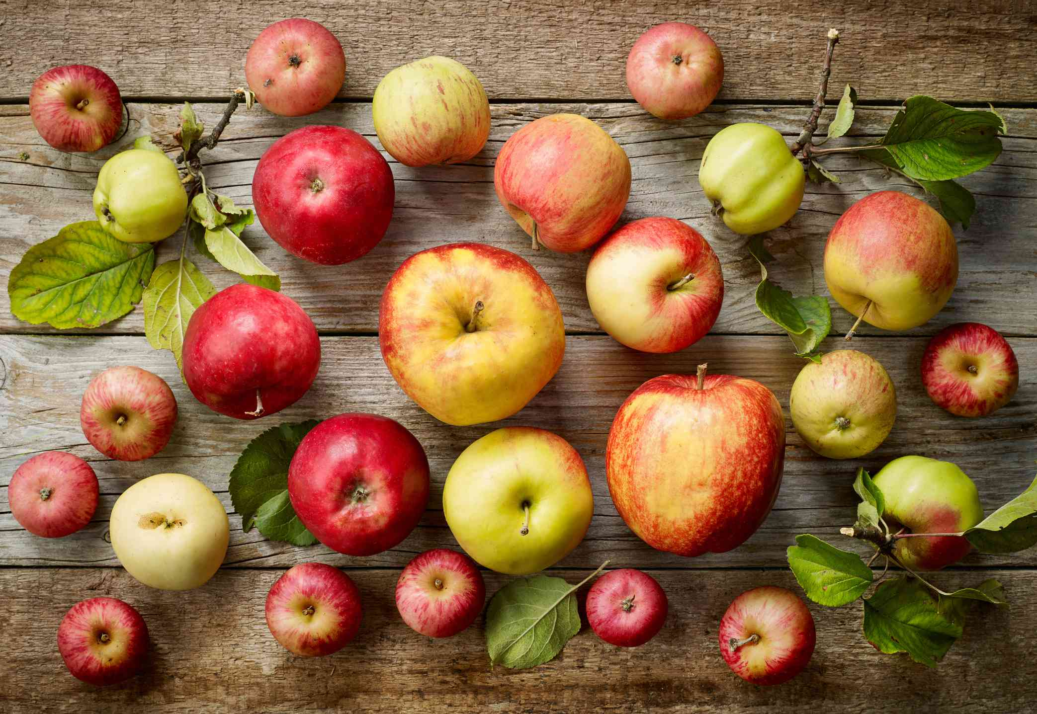 A variety of freshly picked apples with stems and leaves on a wooden board