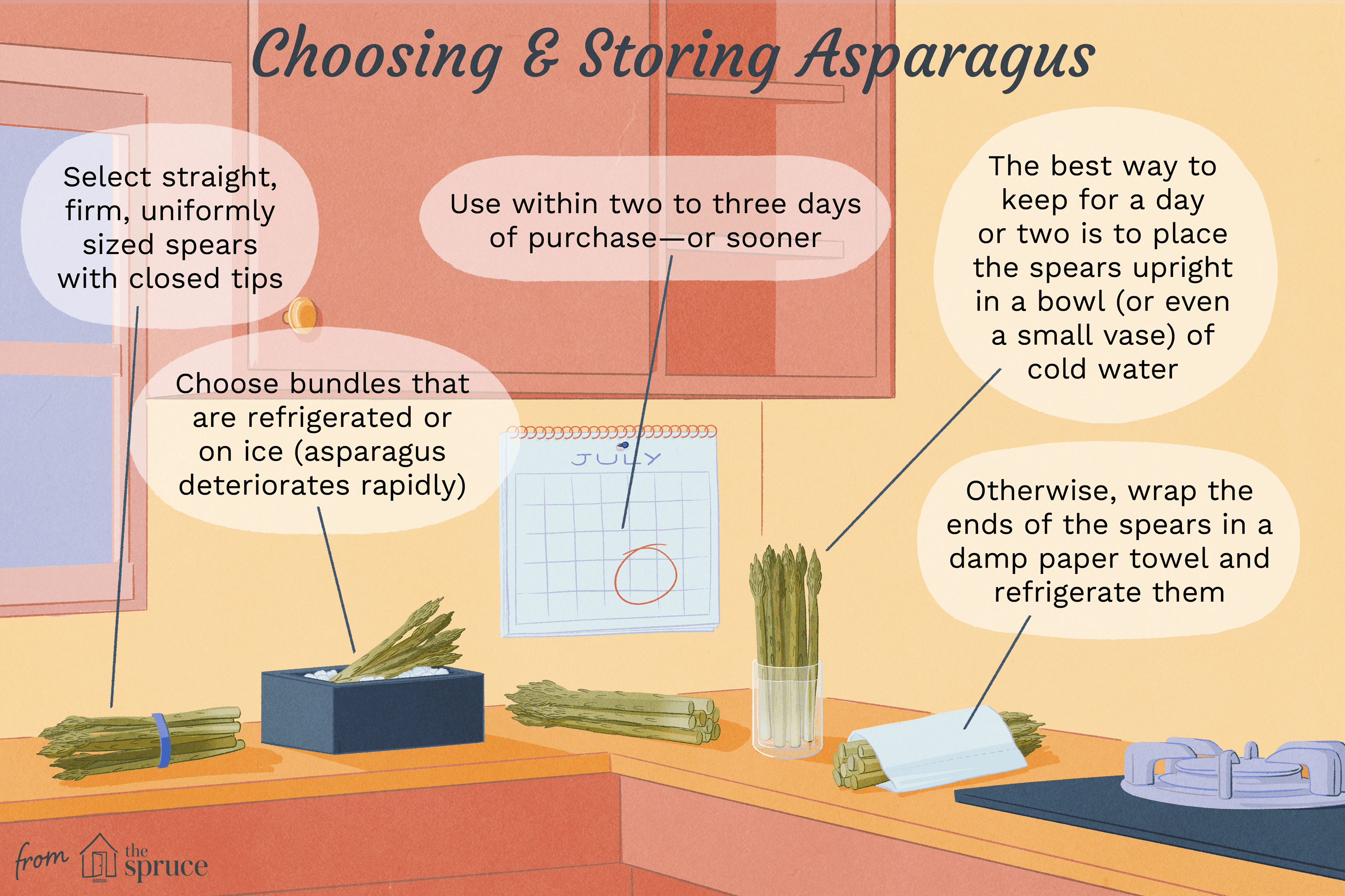 what part of asparagus do you eat