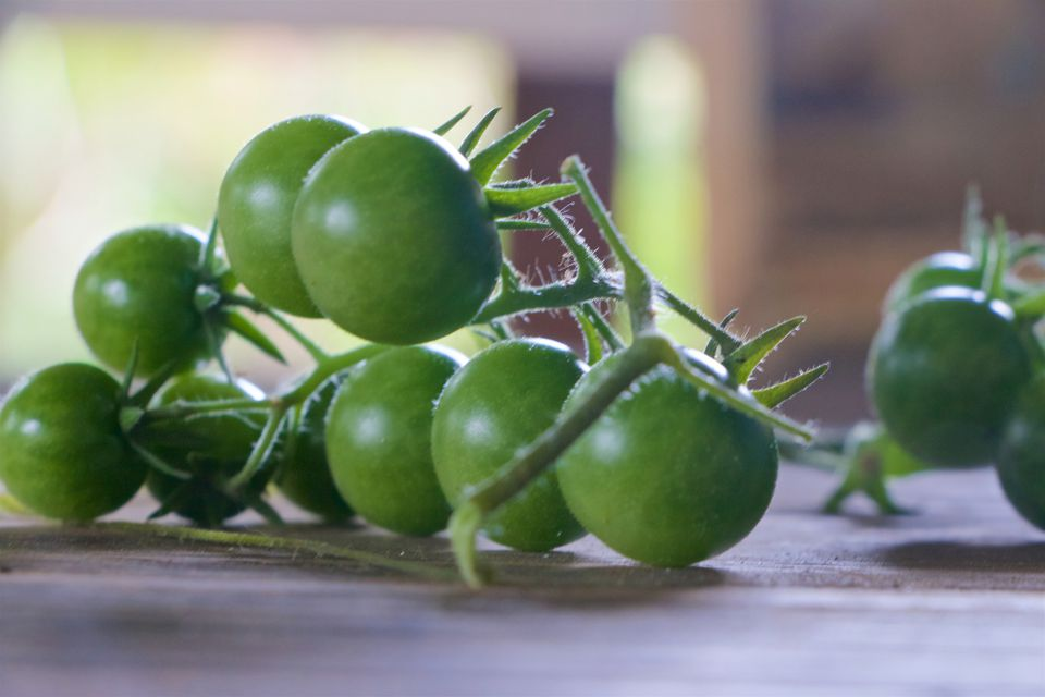 green cherry tomatoes on cutting board