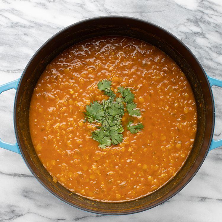 Spicy Vegan Lentil Dahl Tester Image