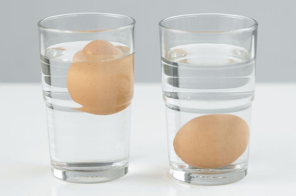 Testing eggs freshness in water