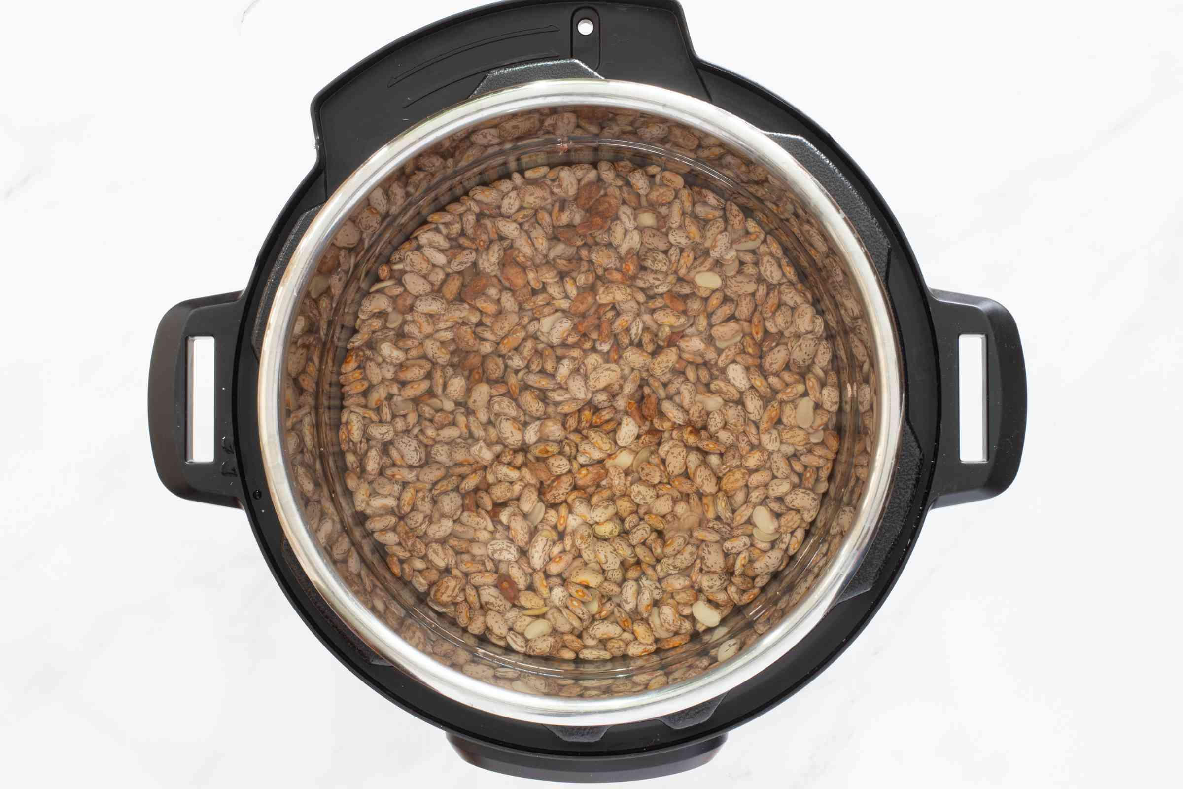 pinto beans in the instant pot