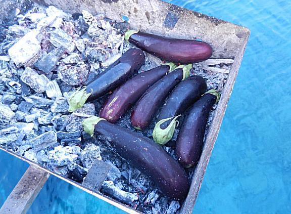 eggplants on charcoal