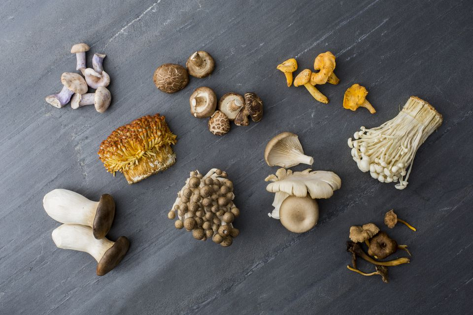 variety of mushrooms on gray surface