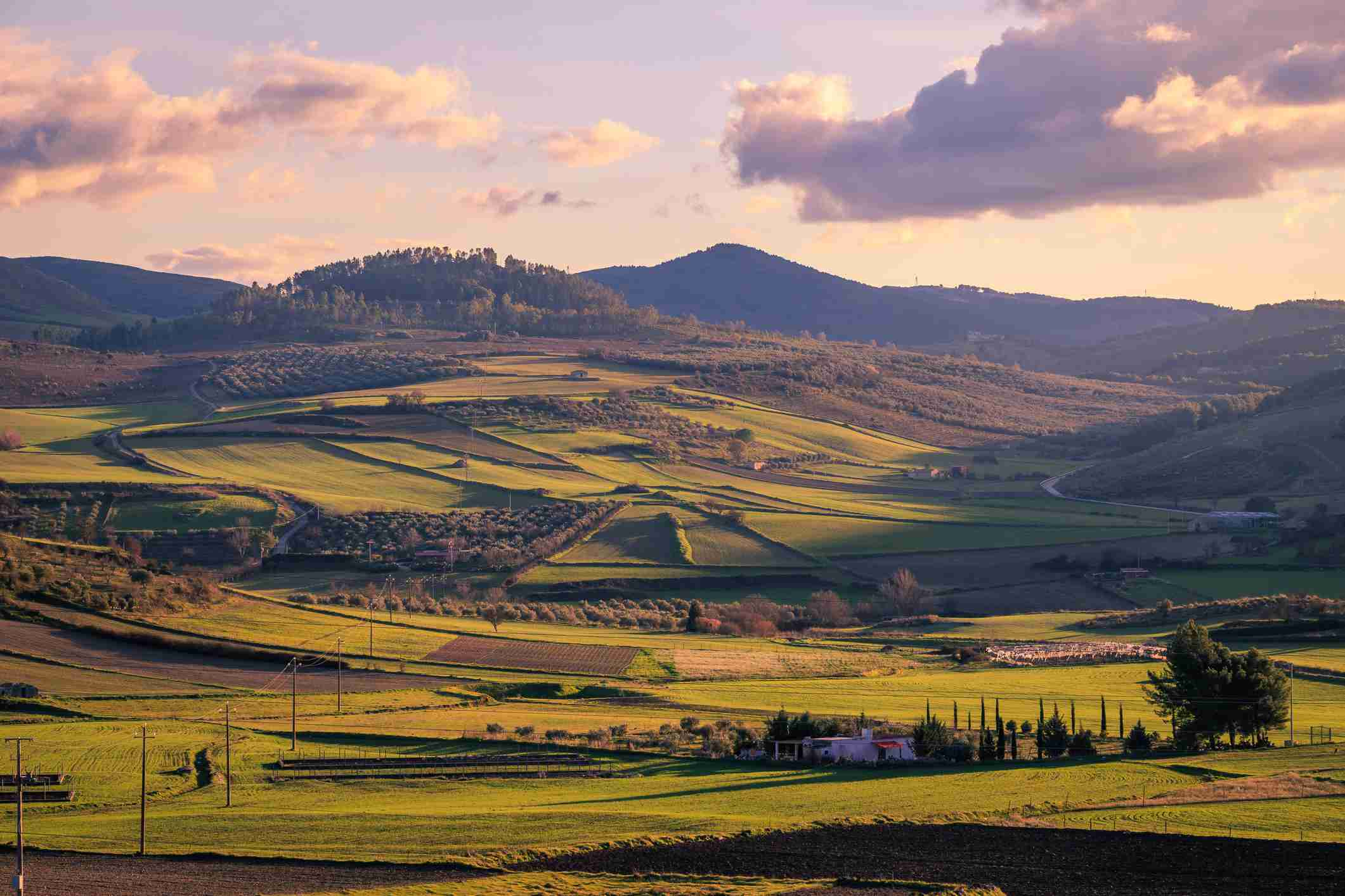 Sicilian winter countryside