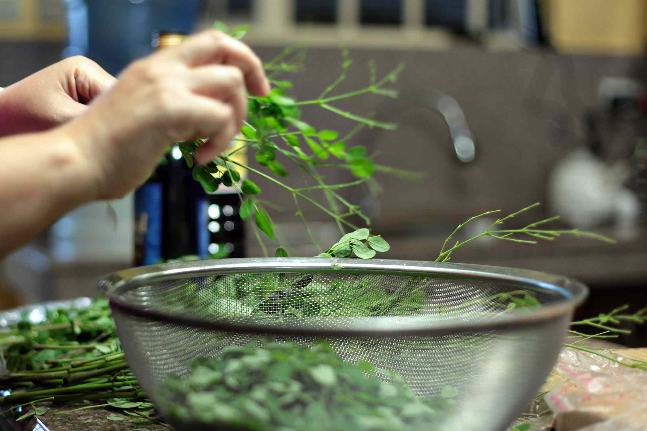 Stripping moringa leaves for cooking
