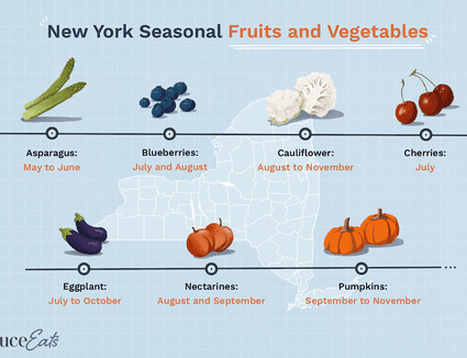 illustration showing seasonal fruits and vegetables of new york state
