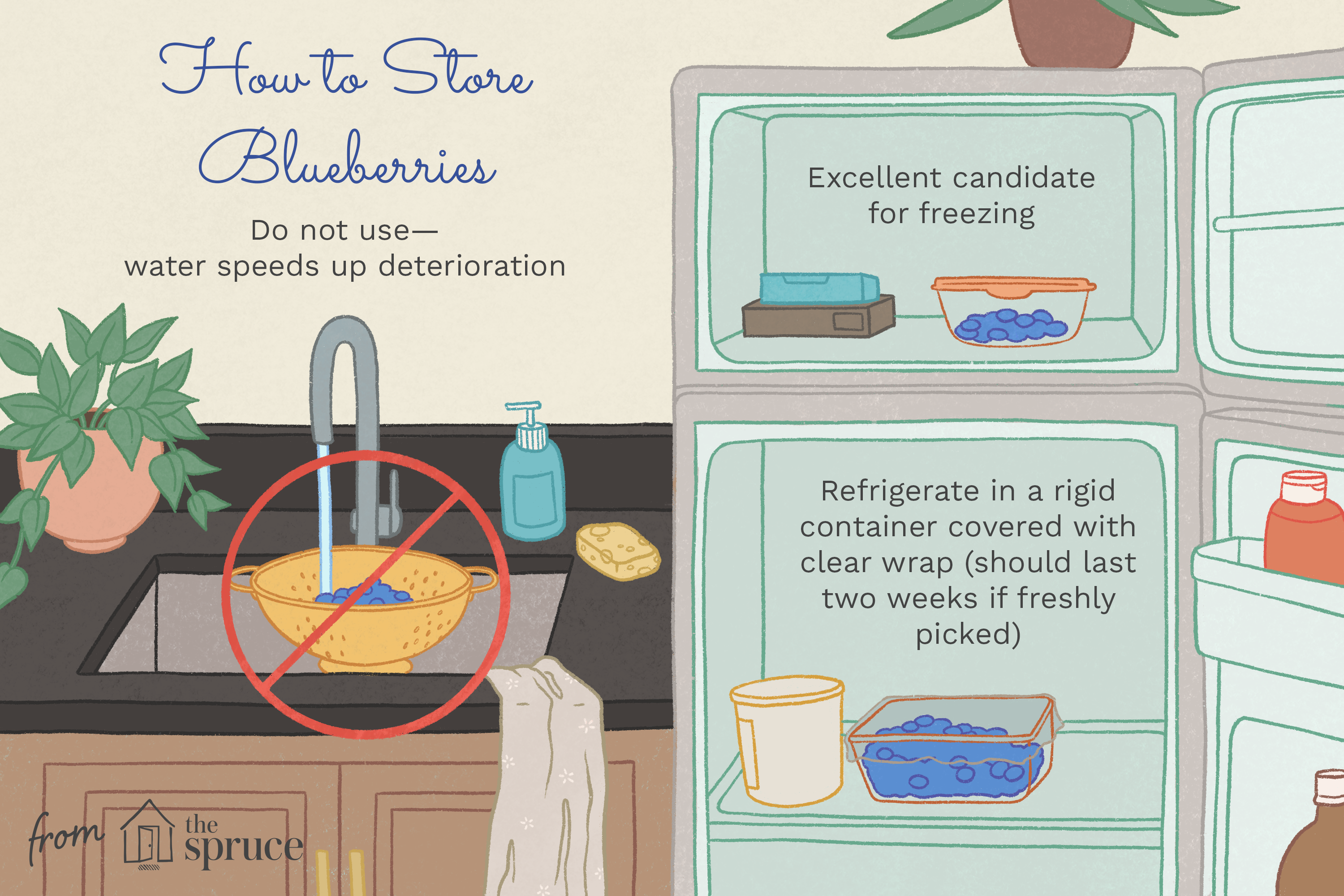 illustration with tips on how to store strawberries