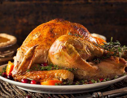 turkey for beginners