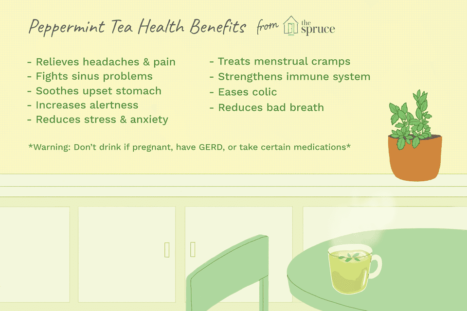 Illustration of the health benefits of peppermint tea